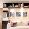 Bibliothèque macassar et sycomore